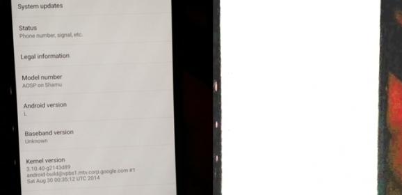 Nexus 6 Confirmed by the Latest Leaks!