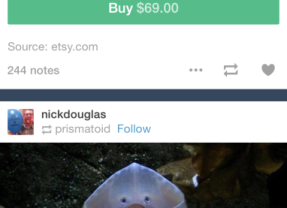 Tumblr Rolls Out A New iPad And iPhone App, Which Adds More Ways For You To Spend