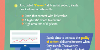 A Brief History Of Panda And Penguin [Infographic]