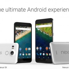 What You Must Know About the Latest Nexus Phones?