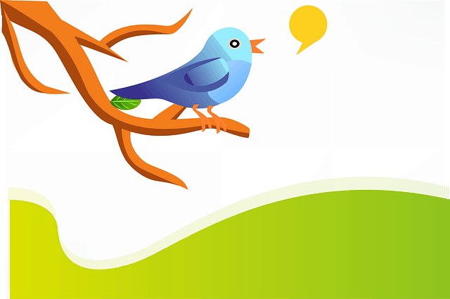An Introduction to Improve Engagement on Twitter
