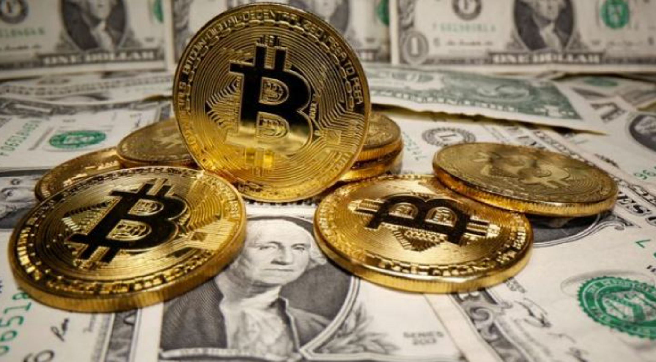 Are You New To Crypto Market? Learn Everything About Bitcoin!