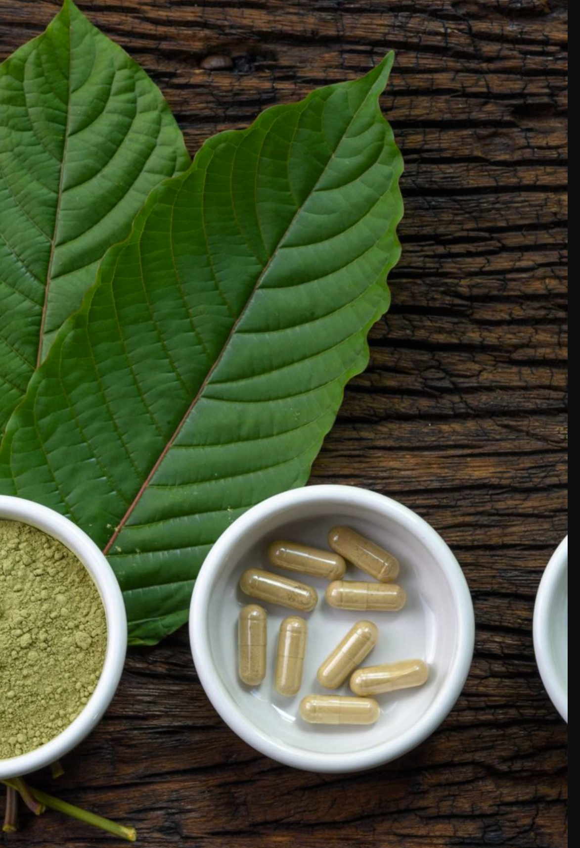 Kratom – All You Need to Know
