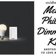 Philips Dimming Kit – A Wireless Way to Dim the Lights