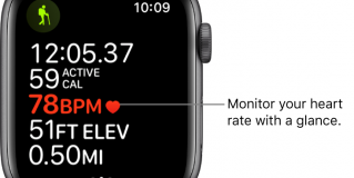 Apple Watch's heart monitor feature has not been fairly accurate–report