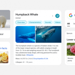 Google redesigns search results on mobile—texts are now larger and bolder