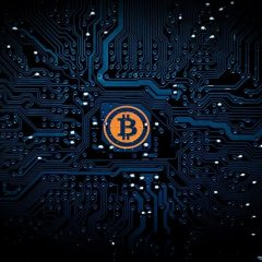 Bitcoin Price Rose Again to a New Record High($50,000)
