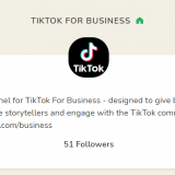 TikTok launches new promotions, ad tools for SMBs